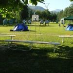 Il campo al mattino